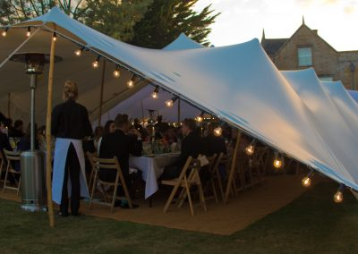 Formal wedding reception with festoons